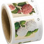 Canada Post recently reprinted an additional 40,000 Hydrangeas coils of 50 stamps.
